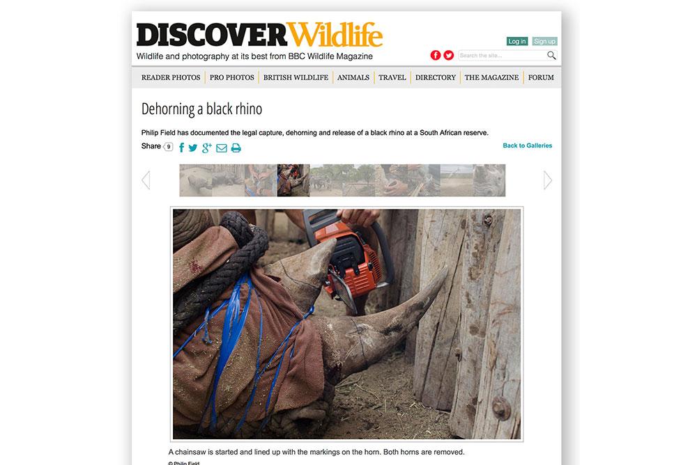 BBC wildlife image