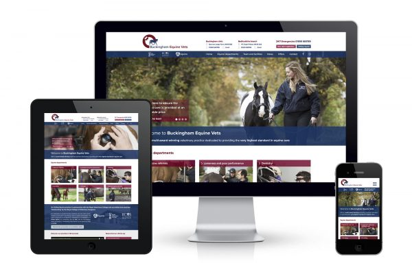 Buckingham Equine Vets - Website design for www.buckinghamequinevets.com