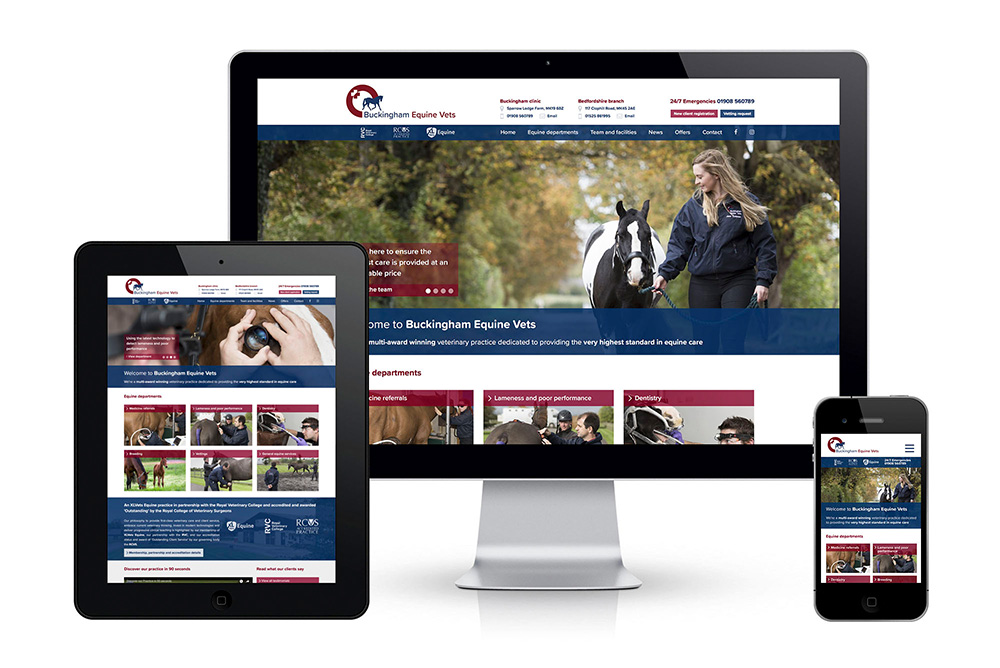 Buckingham Equine Vets - featured image