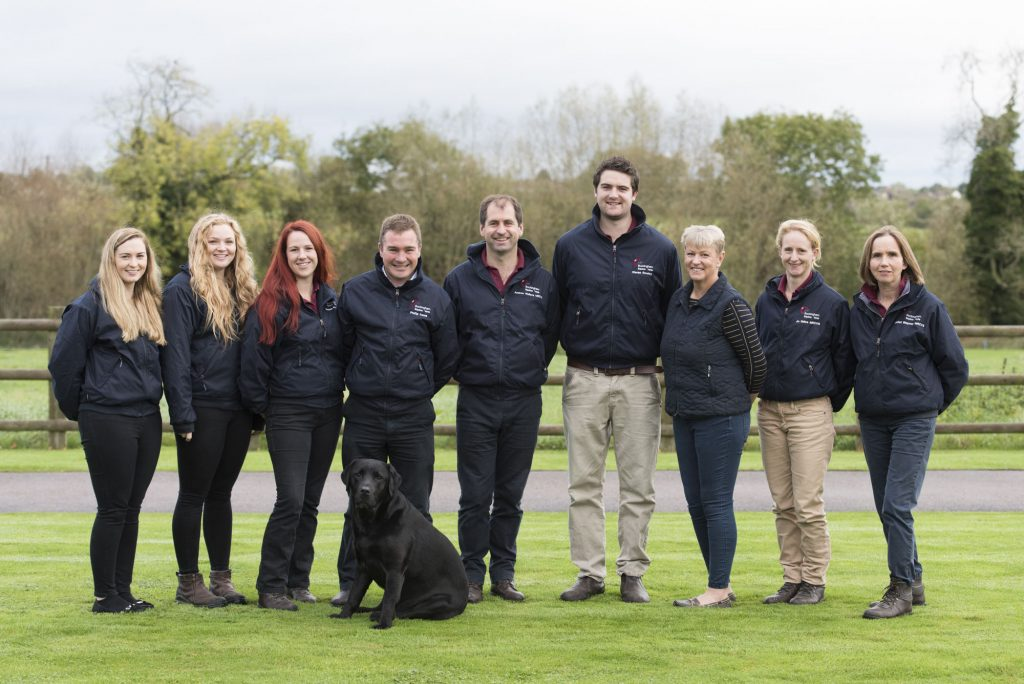 Buckingham Equine Vets - team shot