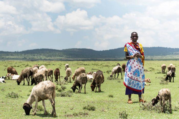 Female goat herder, Tanzania