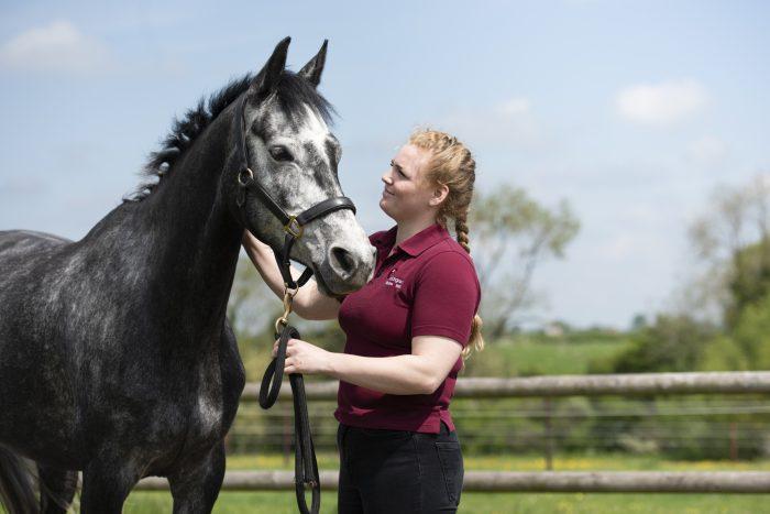 Buckingham Equine Vets